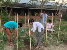 Youth in agriculture in Nepal