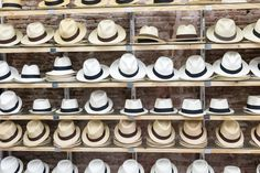 If you're in Panama, you should buy a hat.