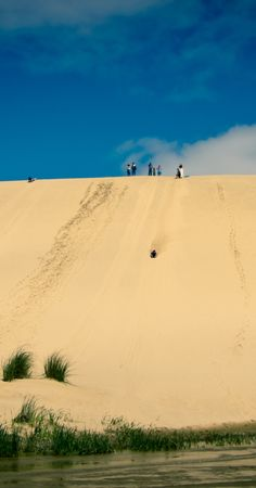 Surfing on sands, Ninety Mile Beach - NZ lots of childhood memories of playing on these, when staying at my grandmas batch (beach house)
