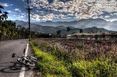 Facebook, Twitter, Taiwan, Youtube, Mountains, Google, Nature, Blog, Photography