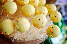 You can always count on Marie Dannettelle of Sweets Indeed to put together a kick-ass sweets table and this farm party is no exception! Baby Shower Cakes, Baby Boy Shower, Baby Showers, Easter Cake Pops, Rubber Ducky Baby Shower, Farm Cake, Wedding Appetizers, Baby Chickens, Farm Birthday