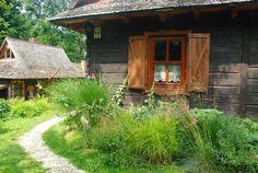 Wiatrakowo, domy z drewna, agroturystyka, zielona metamorfoza