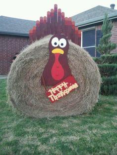 my turkey hay bale, love thanksgiving!
