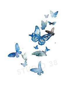 Watercolor Giclee Print  Butterfly Symphony by W.C. Nooney