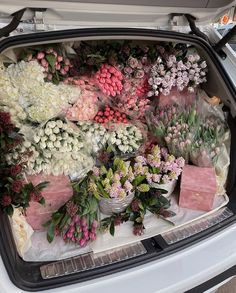 Boquette Flowers, My Flower, Beautiful Flowers, Luxury Flowers, Flowers Nature, Looks Chic, Flower Aesthetic, Pink Roses, Tulips