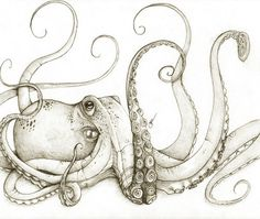 Thinking about an octopus foot tattoo, they're so awesome and SO smart. I'm convinced they're secretly alien life forms. Been here all along...in our oceans.