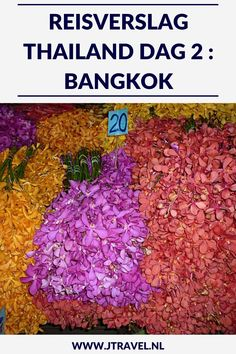 Op dag 2 van mijn 16-daagse groepsrondreis door Thailand kwam ik aan in Bangkok met 's middags een boottocht door de klongs en een bezoek aan de bloemenmarkt. Alles over de tweede dag van mijn reis door Thailand lees je hier. Lees je mee? #Thailand #bangkok #boottocht #klongs #bloemenmarkt #reisverslag #jtravel #jtravelblog-