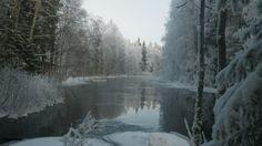 2014 Frosty day Varkaus(Honkapirtti) Suomi/Finland