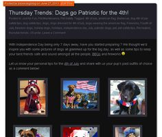 Thursday Trends: Dogs go Patriotic for the 4th! Get inspired to have your dog show their Independence Day spirit! #BIONIC www.bionicdogblog.wordpress.com