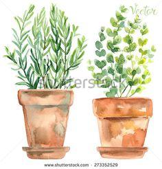 Herb Vector Stock Vectors & Vector Clip Art | Shutterstock