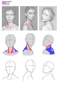 Drawing body proportions anatomy sketch 37 ideas for 2019 - - Drawings body Drawing body proportions anatomy sketch 37 ideas for 2019 Drawing Body Proportions, Body Drawing, Figure Drawing, How To Do Proportions, Neck Drawing, Female Drawing, Gesture Drawing, Drawing Practice, Drawing Lessons