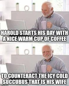 Hide The Pain Harold