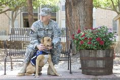 U.S. News - Controversial Army policy makes it difficult for soldiers to get service dogs