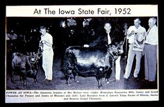 OLD STATE FAIR PHOTOS - Google Search