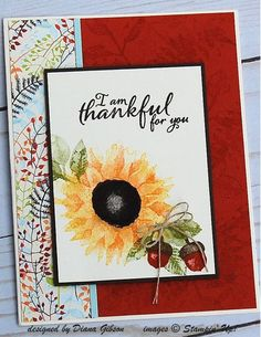 Stampin' Up! Painted Harvest Class Card by Diana Gibson - Cards and Paper Crafts at Splitcoaststampers