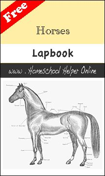 Free Horse Unit Study Resources - Something 2 OfferSomething 2 Offer Free Horses, Wild Horses, Farm Unit, Horse Camp, Kids Education, History Education, Teaching History, Animal Science, Nature Study