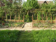 Eco Garden Design Part 2 Eco Garden, Natural Garden, Garden Fencing, Garden Ideas, Living Willow Fence, Willow Garden, Garden Structures, Small Gardens, Looks Cool