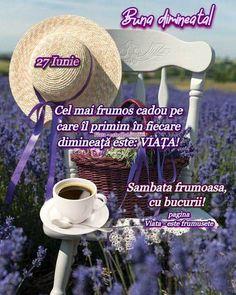 Panama Hat, Good Morning, Buen Dia, Bonjour, Bom Dia, Panama