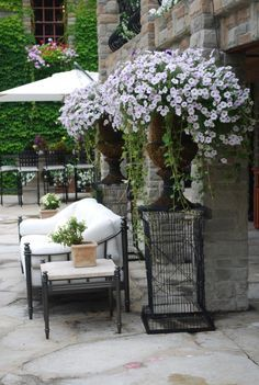 Elegance with petunias and urns!