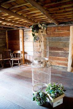 Emu, Wedding Gallery, Homesteading, Outdoor Structures