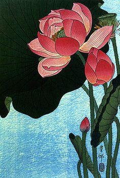 """Flowering Lotus"" Big Japanese Art Print by Koson Asian Art Japan   eBay"