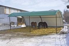 horse shelters - non trap