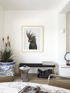 Tamarama Apartment by Decus Interiors