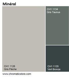 une palette de teintes inspire du minral pour un dcor aux allures industrielles tout en sobrit peinture murale salonpeinture grisesalon