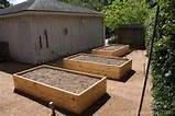raised vegetable beds - Yahoo Image Search Results