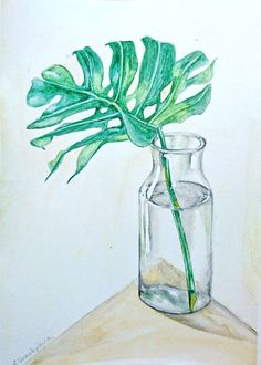 Buy Monstera leaf in a bottle. Still life watercolor painting., Watercolor by Svetlana Vorobyeva on Artfinder. Discover thousands of other original paintings, prints, sculptures and photography from independent artists. Still Life Pencil Shading, Colour Pencil Shading, Color Pencil Art, Still Life Sketch, Still Life Drawing, Drawing Things, Daily Drawing, Leaf Drawing, Nature Drawing