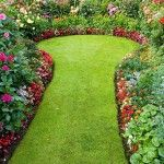 Curved grass pathway and lawn between borders of Dahlias and bedding plants in a suburban garden, UK Garden Paths, Lawn And Garden, Small Gardens, Outdoor Gardens, Garden Boxes, Garden Container, Garden Ideas, Patio Plans, Landscape Plans