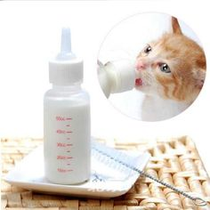 Yosoo 50ml Newborn Pet Small Dog Puppy Cat Kitten Kitty Rabbit Milk Nursing Care Pup Milk Feeding Bottle Set Milk Feeder >>> Be sure to check out this awesome product.