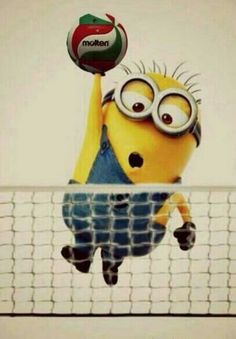 Minion playing volleyball is halarious lol Beach Volleyball, Volleyball Memes, Volleyball Players, Softball, Volleyball Hitter, Volleyball Cheers, Spike Volleyball, Volleyball Problems, Volleyball Ideas