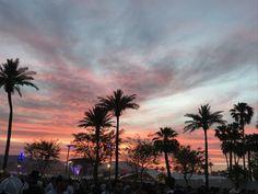 Coachella?