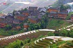 Guangxi Longji terraced fields 广西龙脊梯田