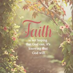So keep up your courage, men, for I have faith in God that it will happen just as He told me. Acts 27:25 If God has given you a promise, hold on to it. It will happen just as He said it would. The...