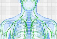 Jump to Adopting Proper Technique - with you are undertaking lymphatic massage, you desire to create certain that you don't press too hard. The lymphatic vessels . -- Understand more tips by clicking the link on the image. Detox Lymphatic System, Best Way To Detox, Dry Brushing Skin, Lymphatic Massage, Muscle Anatomy, Lymph Nodes, Rebounding, Massage Therapy, Eft Tapping