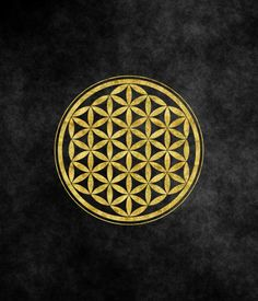 flower of life, scared geometry, life, love, black , gold