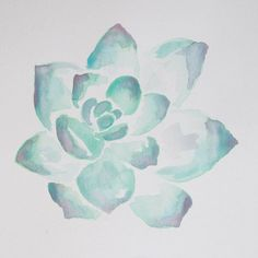 Succulent Illustration watercolor art print by JasmineWisz on Etsy Succulent Illustration watercolor Succulents Wallpaper, Succulents Drawing, Succulents Diy, Watercolor Flowers, Watercolor Paintings, Watercolor Ideas, Cactus, Kawaii, Painting Inspiration