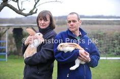Over 20 rabbits were abandoned in Thurston over Christmas