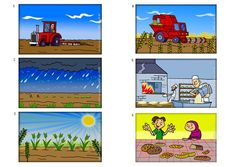 proceso del pan - Buscar con Google
