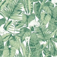 Tropical Self Adhesive Wallpaper in Jungle Green design by Tempaper ($98) ❤ liked on Polyvore featuring home, home decor, wallpaper, wallpaper samples, green home accessories, rainforest wallpaper, green wallpaper, tropical rainforest wallpaper and self adhesive temporary wallpaper