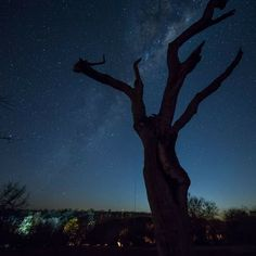 A sky filled with stars in the North Western sky #northwest #southafrica #stargazing