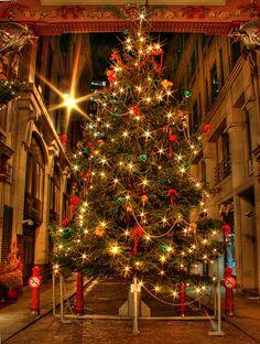 5th December by MarkusGW, via Flickr