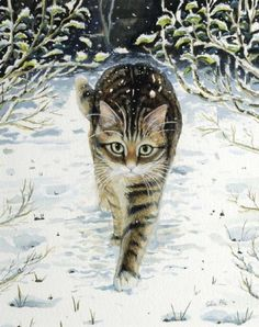 Winter cat painting. Celia Pike - Tabby in the Snow