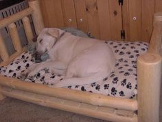 Sunny loves his dog bed... We will build your beloved puppy a bed to fit his cushion so he can sleep in rustic slumber!