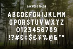 Ad: Oakwood - Rustic Font by Medialoot on Oakwood is a new rustic typeface with plenty of character, it features subtle serifs and angled crossbars. Oakwood comes in 3 different Diy Rustic Decor, Rustic Design, Rustic Log Furniture, All Caps Font, Typography Images, Photoshop Presets, Rustic Hardware, Urban Rustic, Rustic Office