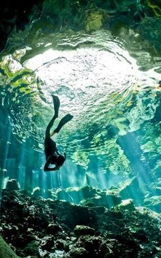 Clear water cenote, mexico. I loved snorkeling in a cenote last year! I would love to go again!