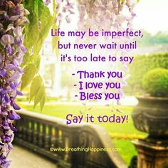 Life may be imperfect...