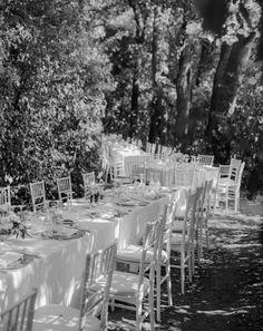 See the full Italian garden wedding on thelane.com Wedding Shoot, Our Wedding, Wedding Dress, Garden Wedding Inspiration, Italian Garden, Pampas Grass, Italy Wedding, Summer Garden, Vows